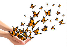 Hands releasing butterflies. Royalty Free Stock Photos