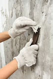 Hands removing wallpaper from wall Stock Image