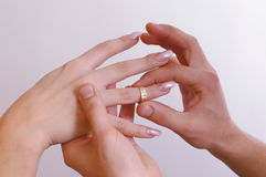 Hands with rings. Man put on a wedding ring to the woman's hand Stock Photography
