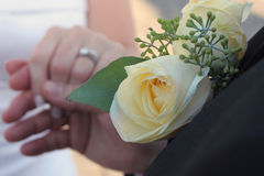 Hands and Rings. Detail of groom holding bride's hand showing wedding rings in formal attire focus is on grooms lapel rose Royalty Free Stock Photos