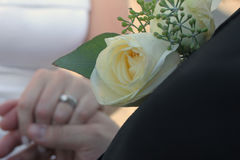 Hands and Rings. Detail of groom holding bride's hand showing wedding rings in formal attire focus is on grooms lapel rose Royalty Free Stock Images