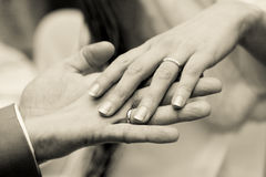 Hands with rings on wedding. Man and women hands with rings on wedding Royalty Free Stock Photos
