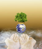 Hands on river shadow with tree on earth above and copy space Stock Image