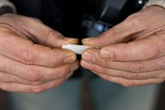 Hands rolling tobacco Stock Photos
