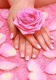 Hands with rose Royalty Free Stock Photos