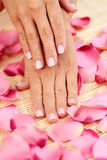Hands with rose petals royalty free stock photo
