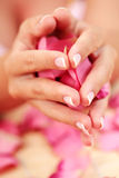 Hands with rose petals Royalty Free Stock Photos