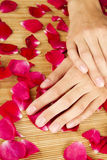 Hands on rose petals Royalty Free Stock Photography