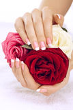 Hands with roses Royalty Free Stock Photos