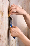 Hands scraping off old wallpaper from wall Royalty Free Stock Image