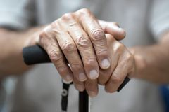 Hands of a senior man holding a cane stock image