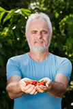 Hands of senior man with strawberry Royalty Free Stock Photo