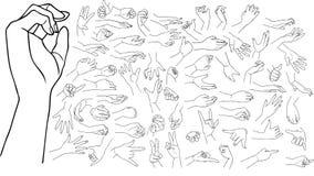Hands  set. Outlined female palms,  set Stock Photos