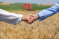 Hands shaking in the field Royalty Free Stock Image