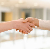 Hands shaking on office background. royalty free stock photos