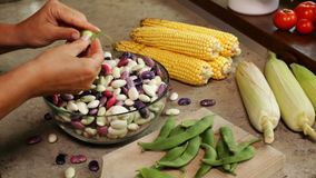 Hands shelling fresh colorful beans into glass bowl stock video footage