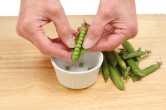 Hands shelling peas Stock Photo