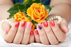 Hands with short manicured nails colored with pink and red nail polish. And rose flower Stock Image