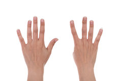 Hands show the number nine Stock Photography