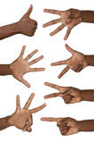 Hands show numbers. Studio shot, isolated royalty free stock photo