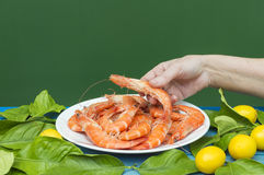 The hands show the prawn. Plate with prawns royalty free stock image