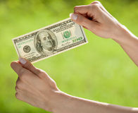 Hands showing dollar banknote Stock Photo