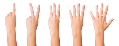 Hands signs Stock Image