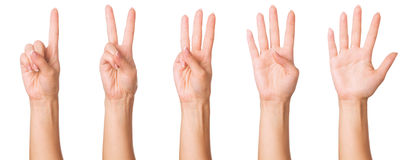 Hands signs Stock Photography