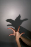 Hands silhouette duck Stock Photos