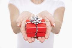 Hands With Small Wrapped Gift Royalty Free Stock Image