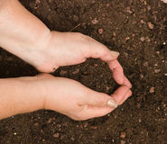 Hands with soil Royalty Free Stock Image