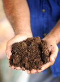 Hands with soil Royalty Free Stock Images