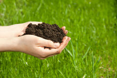 Hands with soil Royalty Free Stock Photography
