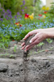 Hands with soil Stock Image
