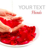 Hands Spa. Έννοια μανικιούρ πέρα από το λευκό στοκ φωτογραφία