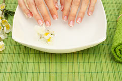 Hands spa Stock Images