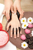 Hands spa treatment Royalty Free Stock Image