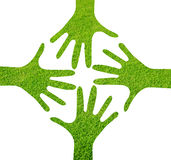Hands star logo. Grass emboss hands star logo with isolated background stock images