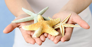 Hands with starfishes Stock Photography