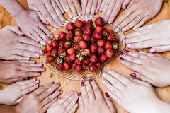 Hands and strawberries. Summer when someone wants strawberries Royalty Free Stock Photos