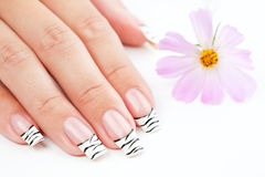Hands with striped manicure relaxing with flowers Stock Images