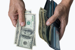 Hands taking out cash from purse. Royalty Free Stock Photo