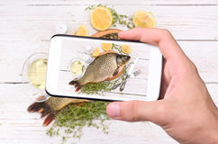 Hands taking photo fish with smartphone. Stock Photo