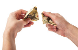 Hands tear money Stock Images