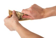 Hands tear money Stock Image