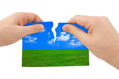 Hands tear nature picture Stock Image