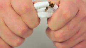 Hands tearing three cigarettes closeup stock video