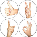 Hands: Thumbs up, OK, Peace, Attention. Hands gestures showing thumb up, ok, peace and quite Royalty Free Stock Photos
