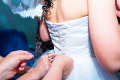Hands tied bow on bride back Stock Photography