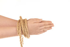 Hands tied with natural hemp. Isolated on white background Stock Photo